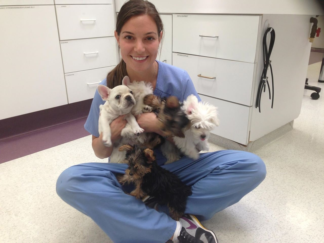 veterinary technicians Search careerbuilder for veterinary technician jobs and browse our platform apply now for jobs that are hiring near you.