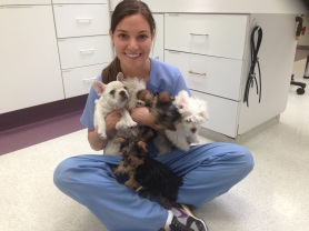 Veterinary Technician Week 2014 found on blog.uniformadvantage.com