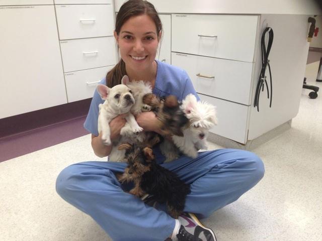 Veterinary Technician Week 2014 found on blog.uniformadvantage.com