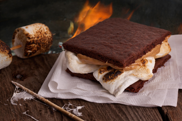 National Smores Day - August 10th, 2015